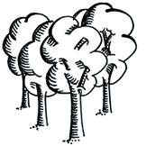 region-trees-v3-162x162